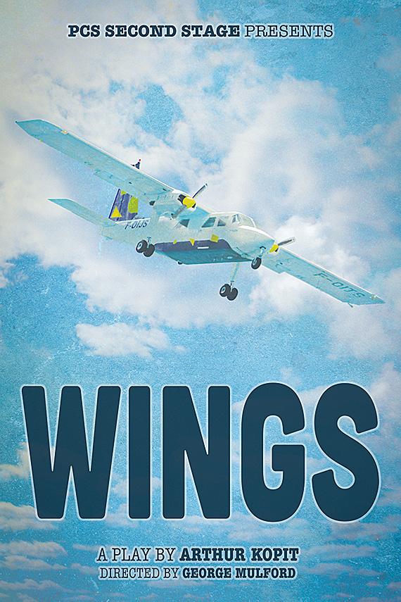 PCS104 Wings