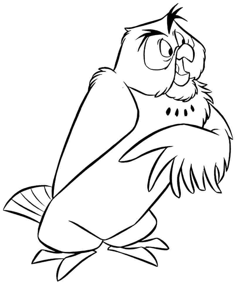 Owl_CB